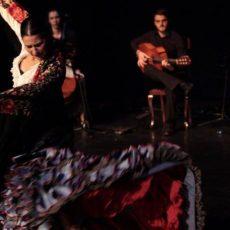 Flamenco Festival Lux