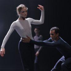 Nederlands Dans Theater on-line
