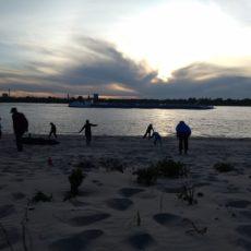 Buitenles 18 mei in het zand…